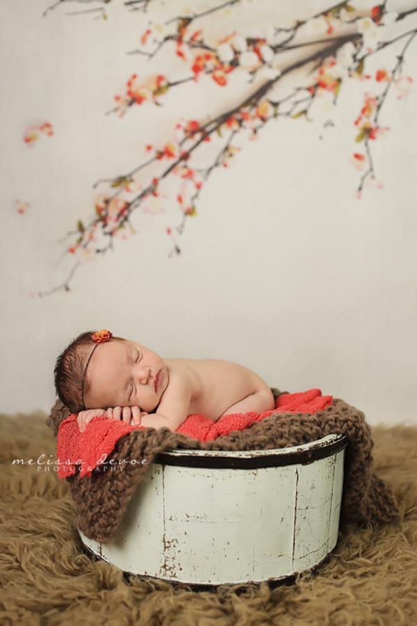 Melissa DeVoe Photography Raleigh NC Newborn Baby Photographer