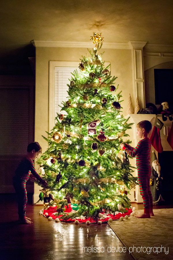 Melissa DeVoe Photography Christmas Tree Photo