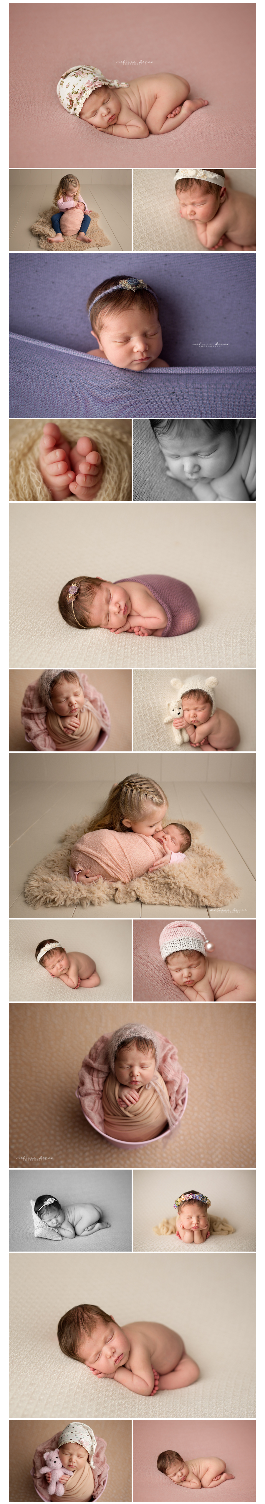 Newborn Photographer Raleigh Durham
