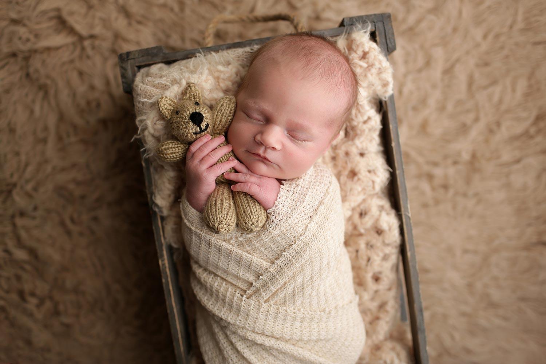 newborn portraits raleigh