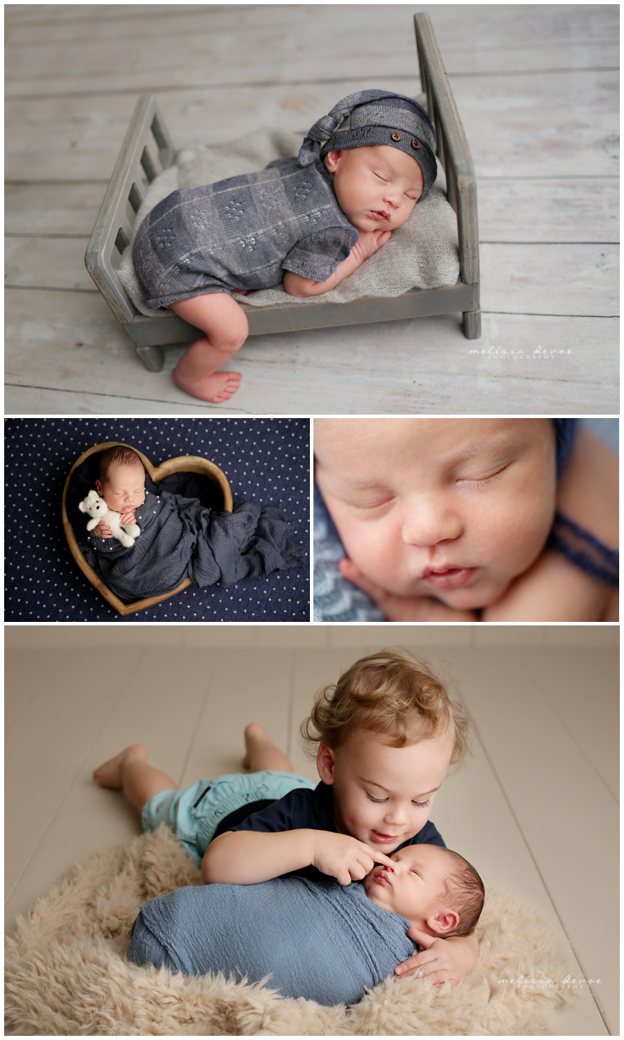 Newborn posed portraits
