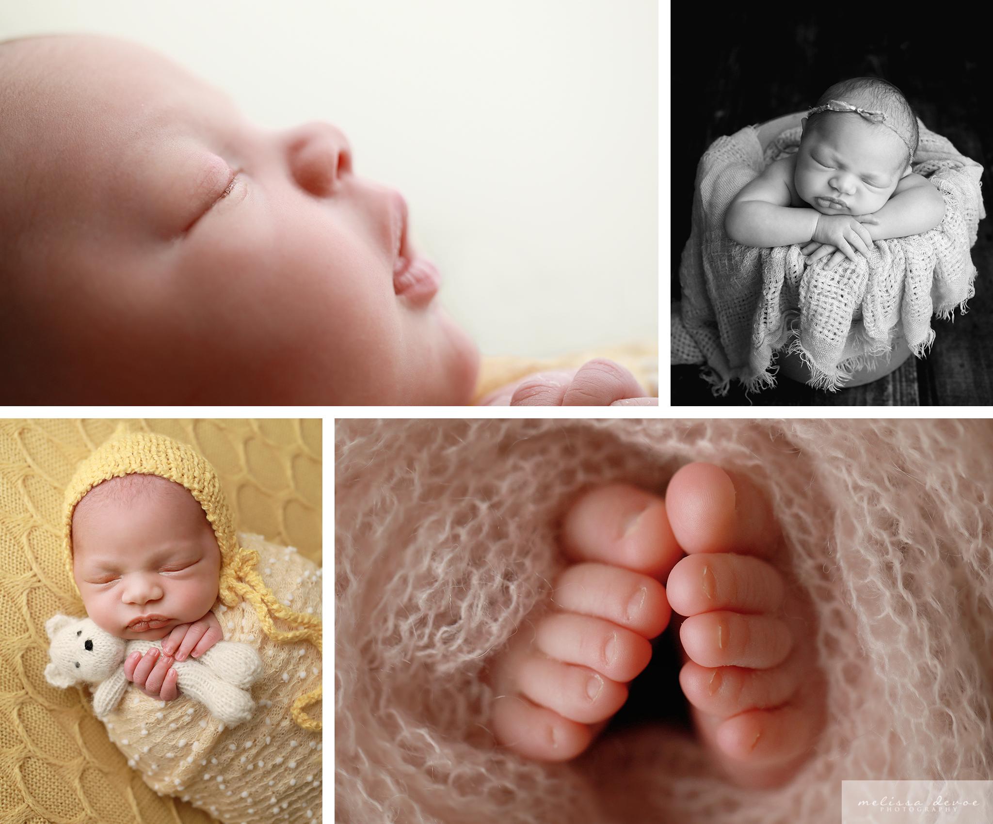 Wake Forest Newborn Photographer